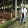 Cai Lậy trên đường phát triển (02.06.2012)