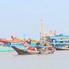 Chuyên đề Gò Công Đông tiềm năng và phát triển 05.11.2016