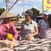 """Miền Tây muôn nẻo chợ """"Thăm chợ khô cá lóc Tam Nông"""""""