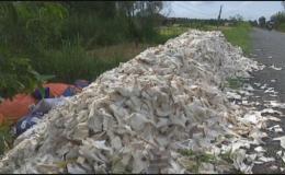 Công an huyện Tân Phước lập biên bản vi phạm môi trường