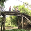"""Ý kiến người dân """"Cầu nửa xi măng – nửa gỗ"""""""