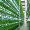 Công nghệ tạo đột phá trong tái cơ cấu nông nghiệp