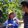 Nâng bước đến trường: Hoàn cảnh em Triệu Lê Thanh Nhàn