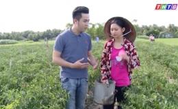 Nâng bước đến trường: Hoàn cảnh em Ngô Kiều Chinh