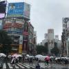 Bão lớn đổ bộ Nhật Bản, hàng trăm chuyến bay bị hủy