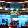 Tuần Phim APEC Việt Nam 2017 chính thức khai mạc ở Đà Nẵng