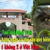 Trại rắn Đồng Tâm nơi lưu giữ hàng ngàn cá thể rắn quý hiếm có 1 không 2 ở Việt nam