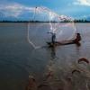 Những hình ảnh tuyệt đẹp về mưu sinh mùa nước nổi ở miền Tây