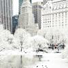 Các điểm du lịch Mỹ 'hoá đá' như kỷ băng hà trong đợt lạnh kỷ lục
