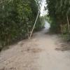 Hai hình ảnh trái ngược trên một tuyến đường nông thôn.