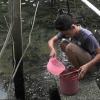 Hơn 300 hộ dân xã Tân Phong, huyện Cai Lậy thiếu nước sạch sinh hoạt