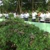 Đoàn công tác Tỉnh ủy Bình Phước khảo sát tiềm năng phát triển du lịch Tiền Giang