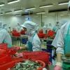 Căng thẳng thương mại Mỹ – Trung: Những thách thức và cơ hội cho Việt Nam