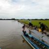 ĐBSCL khẩn cấp gặt lúa chạy lũ ở vùng biên giới