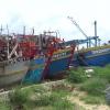 Ngư dân xã Tân Phước, Gò Công Đông tổ chức lễ giỗ cá Ông