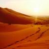 Biến sa mạc Sahara thành nhà máy điện