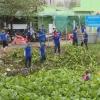 Sở NN&PTNT Tiền Giang bàn giao hiện trạng lòng sông, kênh, rạch cho địa phương quản lý