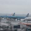 Việt Nam hủy nhiều chuyến bay do bão Mangkhut