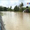 Huyện Gò Công Đông quyết tâm duy trì lòng sông không có lục bình