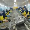 Kim ngạch xuất khẩu sắp đạt 200 tỷ USD