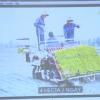 Sở NN&PTNT triển khai dự án vùng sản xuất lúa công nghệ cao tại huyện Gò Công Tây