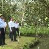 Chủ tịch UBND tỉnh Tiền Giang gặp gỡ nông dân và doanh nghiệp tiêu thụ vú sữa