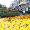 Chợ hoa Xuân Kỷ Hợi 2019 tại Tp. Mỹ Tho sẽ được tổ chức tại 02 địa điểm