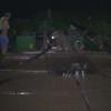 Thêm 01 trường hợp khai thác cát trái phép trên sông Tiền bị bắt quả tang