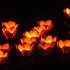 Làng cổ Đông Hòa Hiệp tổ chức thả đèn hoa đăng
