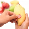 Nhãn dán giữ trái cây tươi đến 2 tuần