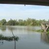 Công ty Khai thác Công trình Thủy lợi Tiền Giang duy trì tốt công tác trục vớt lục bình