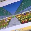 UBND tỉnh thẩm định các dự án đầu tư ngoài ngân sách