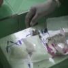 Bắt 1 đối tượng  mua bán, tàng trữ trái phép chất ma túy tại Cái Bè