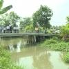 Sở NN&PTNT kiểm tra thực trạng lòng sông