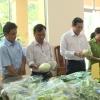Sở Nông nghiệp và Phát triển nông thôn tổng kết hoạt động năm 2018