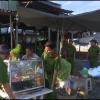 Tân Phước giải tỏa vi phạm hành lang đường tỉnh 865
