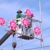 Chợ Gạo đầu tư trên 01 tỷ đồng thực hiện trang trí đèn nghệ thuật
