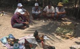 Công an Chợ Gạo triệt xoá tụ điểm đá gà