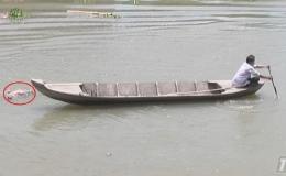 Cai Lậy phát hiện một thi thể nam trôi sông