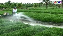 """Cây lành trái ngọt """"Vai trò nước tưới và phương pháp tưới nước với một số loại cây"""""""