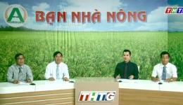 """Bạn nhà nông """"Chăm sóc lúa trong điều kiện thời tiết khắc nghiệt"""""""