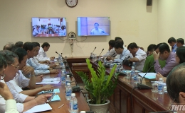 Tiền Giang tham gia họp trực tuyến về phòng chống dịch tả heo Châu Phi