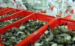 Mỹ chưa điều tra DN xuất khẩu tôm Việt Nam lẩn tránh thuế