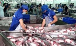 Giá cá tra giảm chạm đáy mục tiêu xuất khẩu thuỷ sản 10 tỷ USD gặp khó