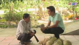 """Cây lành trái ngọt """"Dừa sáp Cầu Kè Trà Vinh"""""""
