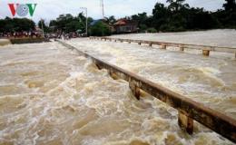 Trong 5 ngày tới, lũ sông Mekong sẽ về đến đồng bằng sông Cửu Long