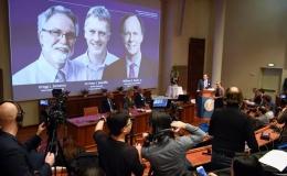 Nobel Y học 2019: Mở ra chiến lược mới chống ung thư