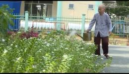 """Chuyên đề 17-10″ Cụ bà 79 tuổi với sở thích trồng hoa làm đẹp cho đời…"""""""