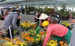Tp. Mỹ Tho triển khai kế hoạch tổ chức Chợ hoa Xuân Canh Tý 2020