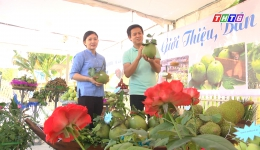 """Cây lành trái ngọt """"Trái cây nông sản tại Lễ hội Làng cổ Đông Hòa Hiệp"""""""